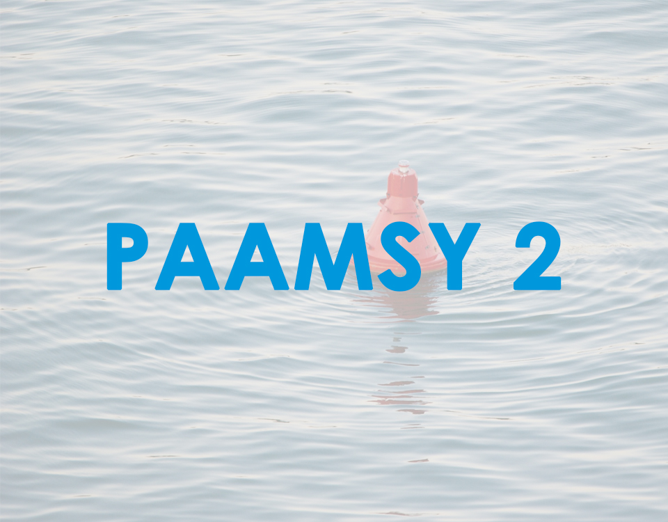 Proyecto PAAMSY 2